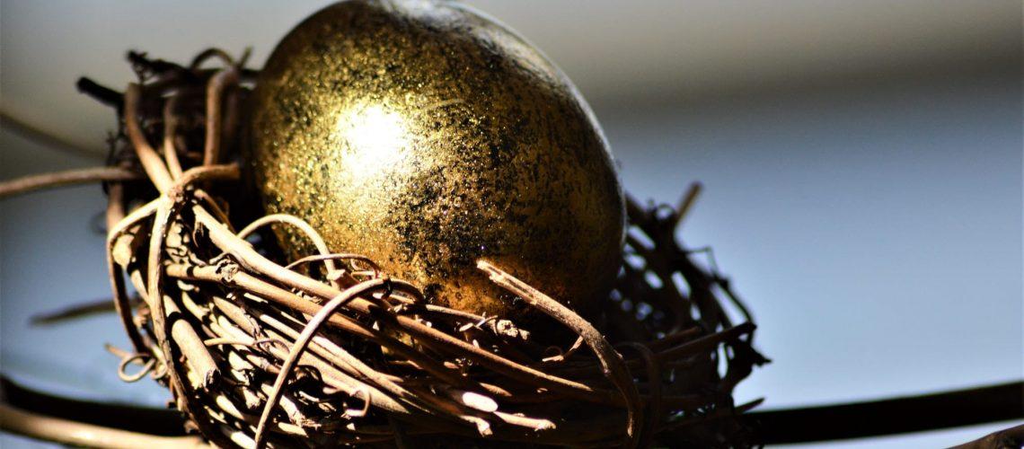 A golden egg in a bird nest. Your future nest egg. Gold Golden Egg Financial.